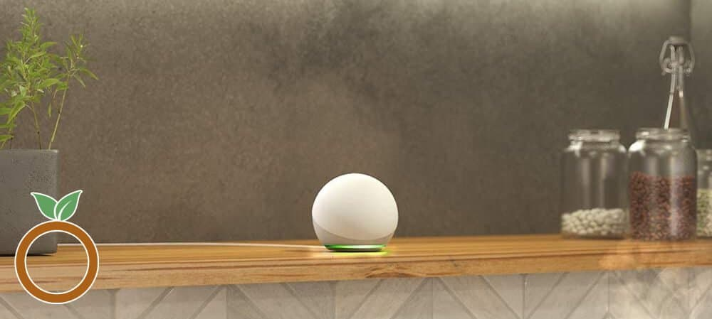 Alexa Echo Dot 4th Generation